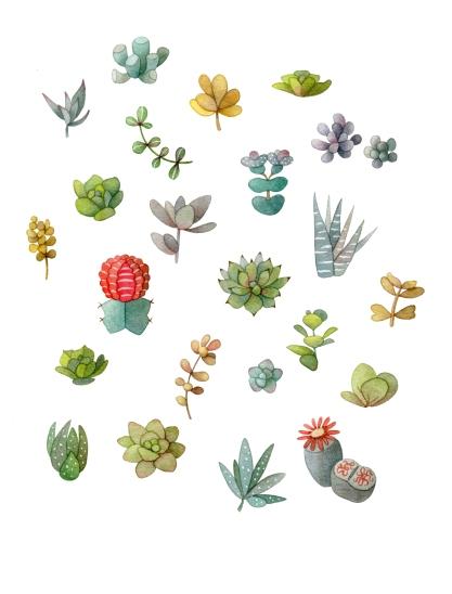 Ditsy Cactus