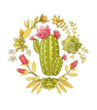 Border Cactus