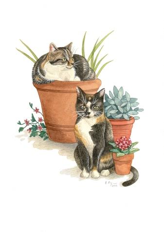 Cats & Flowerpots